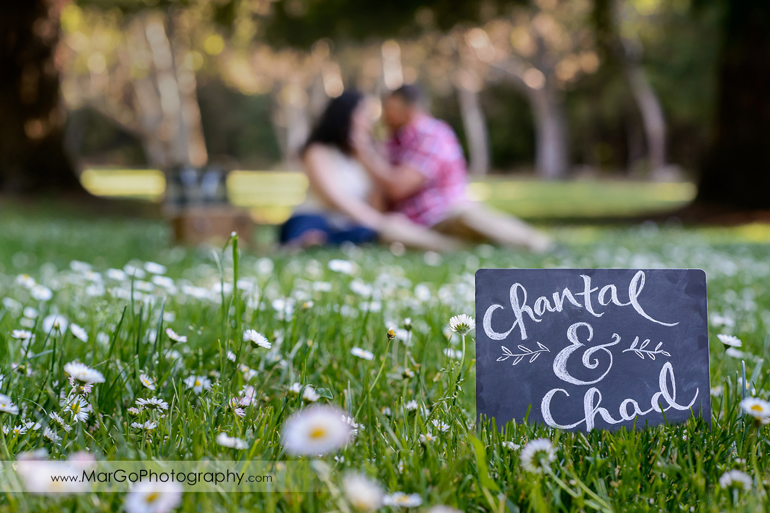 engagement session picnic at Sanborn County Park